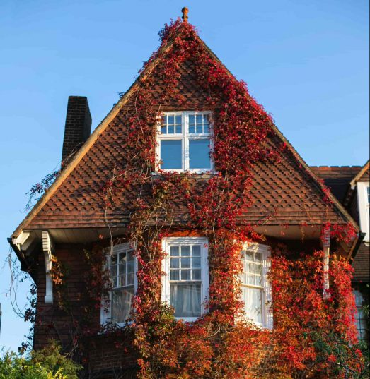 Is there special home insurance for protected houses?